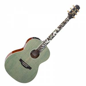 Takamine LTD2020 Peace